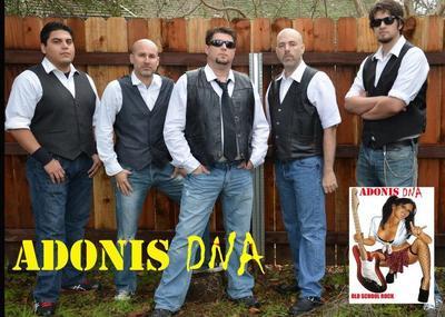 Adonis DNA