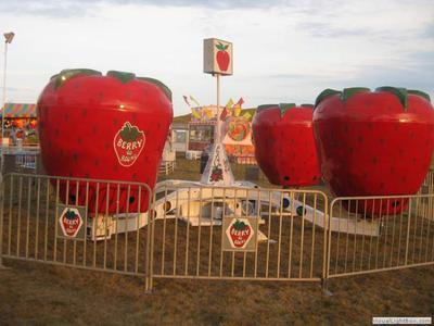 Berry-Go-Round