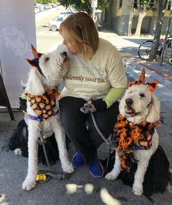 Pet Halloween Psychic Reading Event in San Francisco