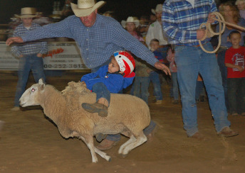 Mutton Bustin in Gordonsville, VA