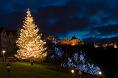Christmas Lights Shows, Displays & Attractions ®> Holiday Xmas Light ...