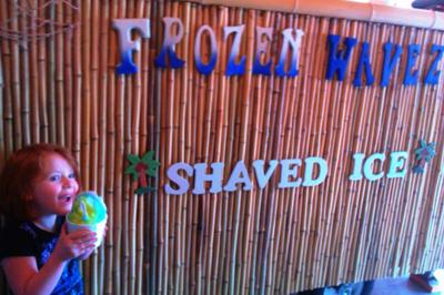 Frozen Wavez Shaved Ice