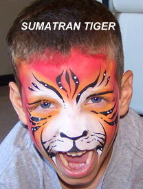 Sumatran Tiger Boy