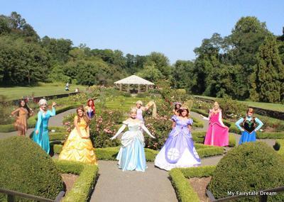 My Fairytale Dream