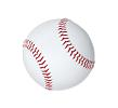 New York Yankees Baseball