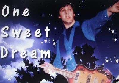Banner for McCartney tribute band