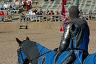 Jousting at a Renaissance Fair