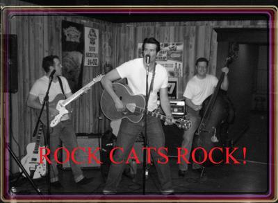 Rock Cats Rock