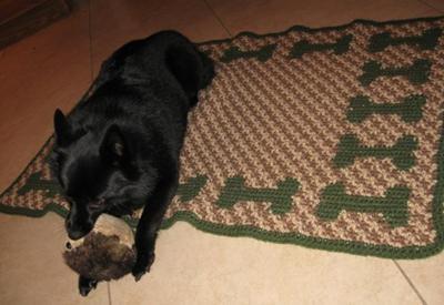 Dog Sleeping Mat