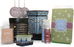 Scentsy Display