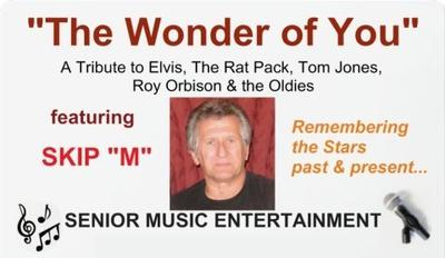 The Wonder of You Show
