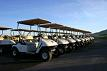 Golf Buggies Used