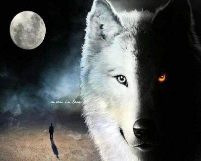 Wolf Mountain Band